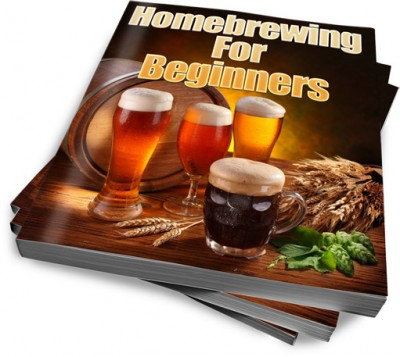 Homebrewing For Beginners