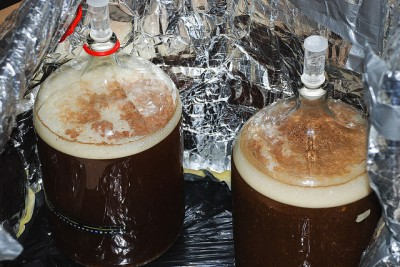 Beers Fermenting In Carboys
